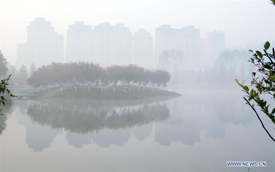 A park is cloaked with thick fog in Bozhou, east China\'s Anhui Province, Nov. 13, 2018. (Xinhua/Zhang Yanlin)