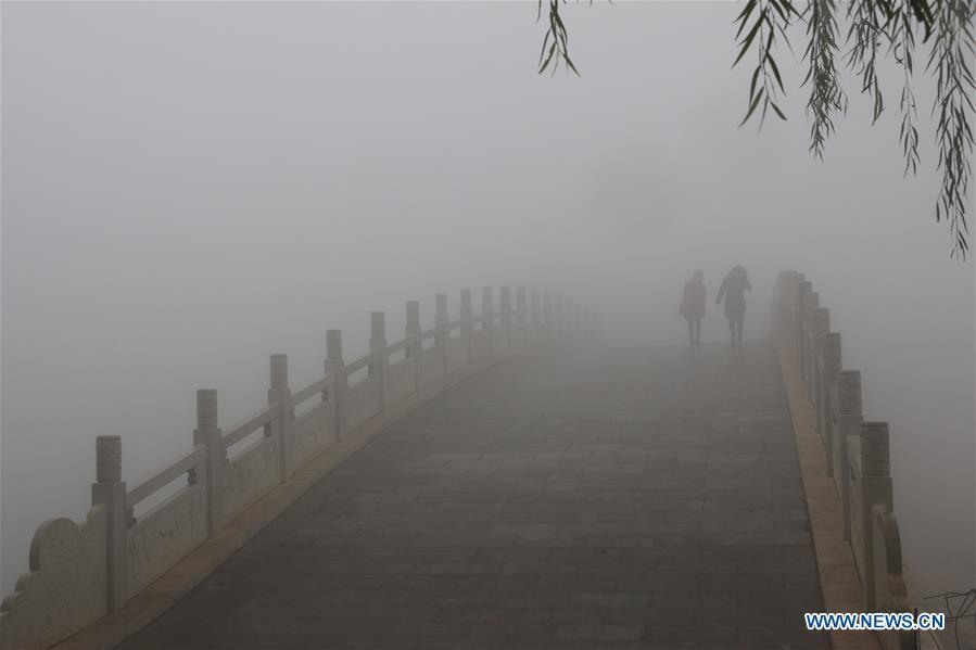 Citizens walk in a park in thick fog in Handan, north China\'s Hebei Province, Nov. 13, 2018. (Xinhua/Cheng Xuehu)