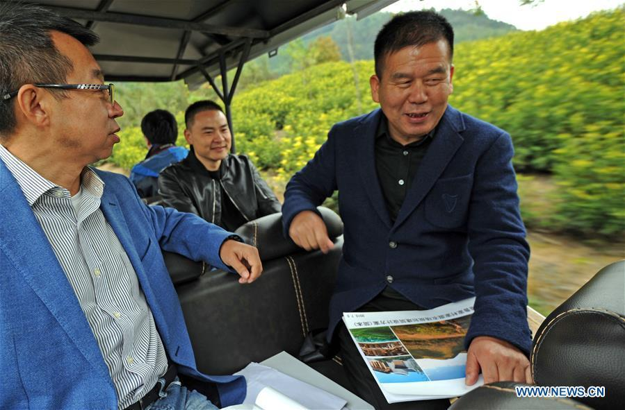 Zhu Renbin (1st R), secretary of the Communist Party of China local branch in Lujia Village, discusses the village\'s development plan with Ding Wei (1st L), a designer from south China\'s Guangdong Province, in Lujia of Anji County, east China\'s Zhejiang Province, Nov. 14, 2018. Lujia Village is located in the mountainous region in northeastern Anji. The village has a population of over 2,200 and about 533 hectares of bamboo forests. To build a beautiful village and improve the living of local villagers, Lujia implemented a comprehensive plan for rural, industrial and tourism development in recent years. The income of the village\'s collective economy surged from 18,000 yuan (about 2,500 U.S. dollars) in 2011 to 3.3 million yuan (about 475,000 U.S. dollars) in 2017. The per capita income of local people arrives at 35,000 yuan (about 5,000 U.S. dollars). So far, the village has collective assets valued at nearly 200 million yuan (about 28.8 million U.S. dollars). (Xinhua/Tan Jin)