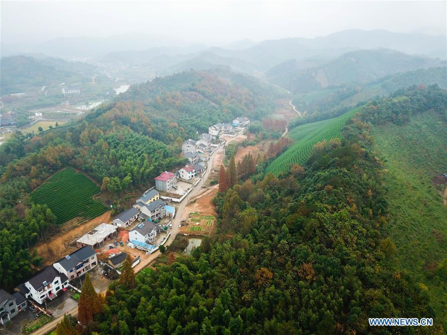 Aerial photo taken on Nov. 16, 2018 shows the scenery of Lujia Village in Anji County, east China\'s Zhejiang Province. Lujia Village is located in the mountainous region in northeastern Anji. The village has a population of over 2,200 and about 533 hectares of bamboo forests. To build a beautiful village and improve the living of local villagers, Lujia implemented a comprehensive plan for rural, industrial and tourism development in recent years. The income of the village\'s collective economy surged from 18,000 yuan (about 2,500 U.S. dollars) in 2011 to 3.3 million yuan (about 475,000 U.S. dollars) in 2017. The per capita income of local people arrives at 35,000 yuan (about 5,000 U.S. dollars). So far, the village has collective assets valued at nearly 200 million yuan (about 28.8 million U.S. dollars). (Xinhua/Meng Chenguang)