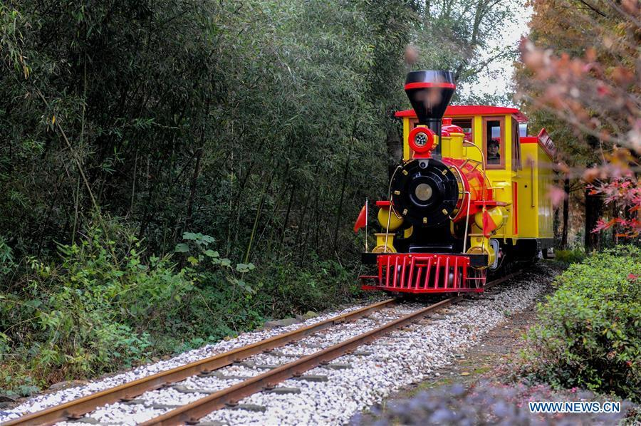 A sightseeing train runs across Lujia Village in Anji County, east China\'s Zhejiang Province, Nov. 17, 2018. Lujia Village is located in the mountainous region in northeastern Anji. The village has a population of over 2,200 and about 533 hectares of bamboo forests. To build a beautiful village and improve the living of local villagers, Lujia implemented a comprehensive plan for rural, industrial and tourism development in recent years. The income of the village\'s collective economy surged from 18,000 yuan (about 2,500 U.S. dollars) in 2011 to 3.3 million yuan (about 475,000 U.S. dollars) in 2017. The per capita income of local people arrives at 35,000 yuan (about 5,000 U.S. dollars). So far, the village has collective assets valued at nearly 200 million yuan (about 28.8 million U.S. dollars).(Xinhua/Zhang Liqing)