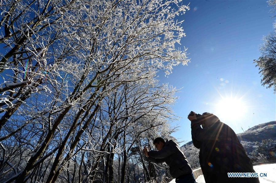 People take photos of snow-covered trees at Dashui forest in Longping Town, Baokang County, central China\'s Hubei Province, Nov. 18, 2018. (Xinhua/Yang Tao)