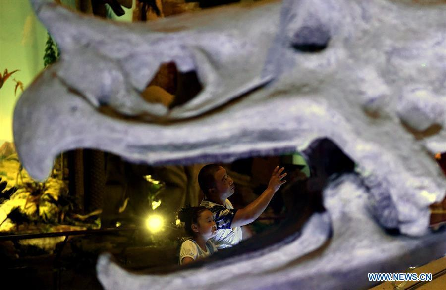 Tourists view dinosaur fossils at the World Dinosaur Valley in Lufeng County, southwest China\'s Yunnan Province, Dec. 23, 2017. The Lufeng World Dinosaur Valley, a dinosaur theme park, exhibited over 100 fossils of a variety of dinosaurs. China is slated to become world\'s largest theme park market by 2020, when the number of tourists is expected to exceed 230 million, according to a fresh report by U.S. engineering firm AECOM. The number of tourists to Chinese theme parks have seen an average annual growth of 13 percent in the past decade, and reached 190 million in 2017. The number is expected to keep the double digit growth in the following years, according to the report. The report attributes the rapid growth to Chinese consumers\' rising income that sparks greater demands on leisure activities, as well as more convenient public transportation systems. (Xinhua/Lin Yiguang)