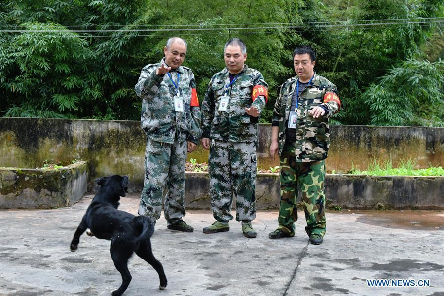 Forest rangers Tang Xiaoping (L), Li Yongfu (C) and Yang Yueping play with a dog at Hushi forestry farm in Chishui City, southwest China\'s Guizhou Province, Oct. 24, 2018 Chishui is famous for its bamboo forest. To guard the bamboo, forest rangers need to patrol for all year round. At the Hushi forestry farm, there is a patrol group consisting of a dozen of forest rangers. They are in charge of about an area of 2,400 hectares. Loneliness is one of the difficulties they need to face as they can only go back home after one-week work. But all of them stay to keep working after those years as they love the bamboo forest and are determined to guard it. (Xinhua/Li Mangmang)