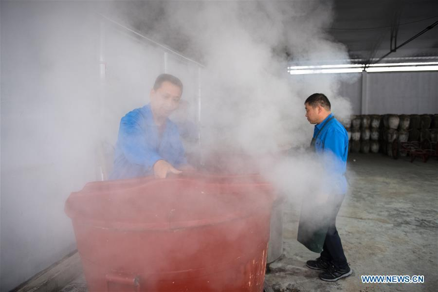 Workers cook rice to make wine at Shaoxing Nuerhong Winery Company in Shaoxing, east China\'s Zhejiang Province, Nov. 21, 2018. The company maintains its traditional rice wine brewing method, which is composed of nearly 20 processing steps. (Xinhua/Weng Xinyang)