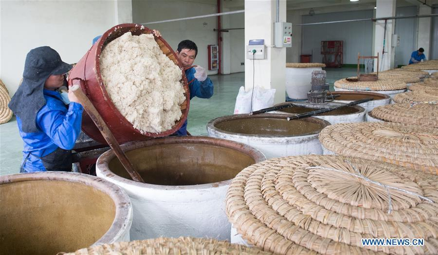 Workers put the cooked rice into a jar to make wine at Shaoxing Nuerhong Winery Company in Shaoxing, east China\'s Zhejiang Province, Nov. 21, 2018. The company maintains its traditional rice wine brewing method, which is composed of nearly 20 processing steps. (Xinhua/Weng Xinyang)