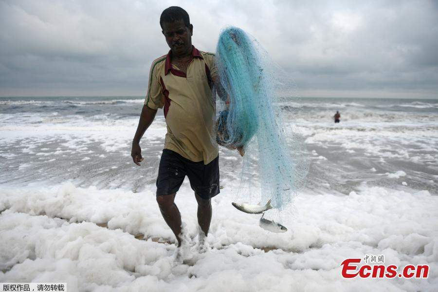 An Indian fisherman carries his catch with his fishing net as foamy discharge, caused by pollutants, mix with surf at a beach in Chennai on November 22, 2018. High levels of sewage and industrial waste was claimed to be the cause of the foam, officials said. (Photo/Agencies)
