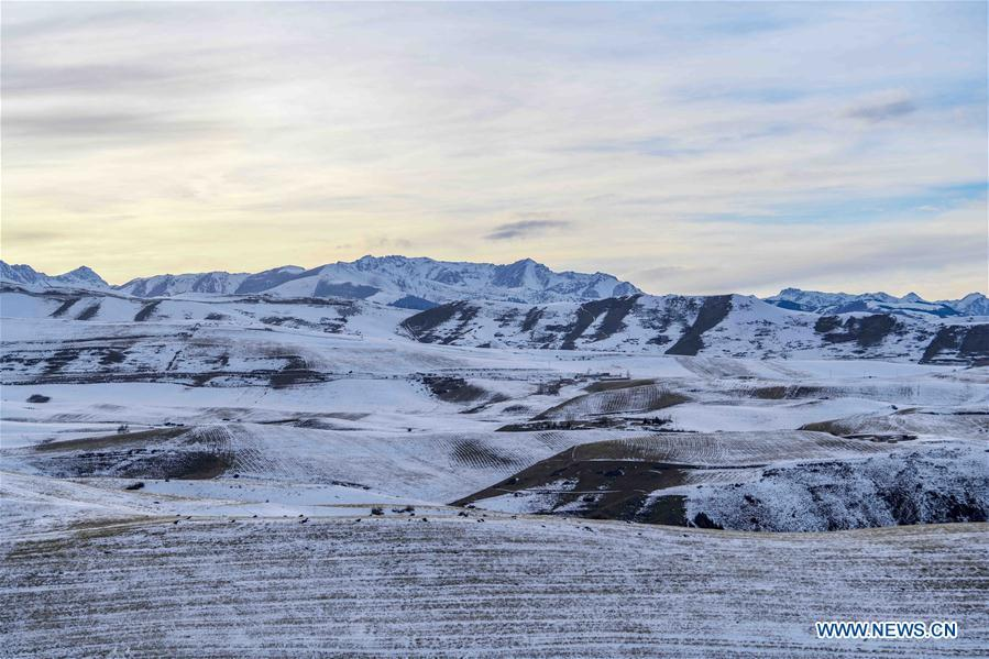 Photo taken on Nov. 22, 2018 shows snow-covered field in Qitai County, northwest China\'s Xinjiang Uygur Autonomous Region. (Xinhua/Zhao Ge)