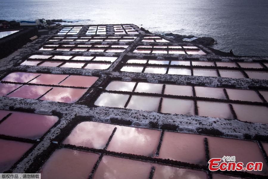 A picture shows salt pans at the Salinas de Fuencaliente, south of the island of Las Palmas in Spain on November 26, 2018. Las Salinas de Fuencaliente is an exploitation of 35,000 square metres of high quality sea salt near the Teneguia volcano range.(Photo/Agencies)