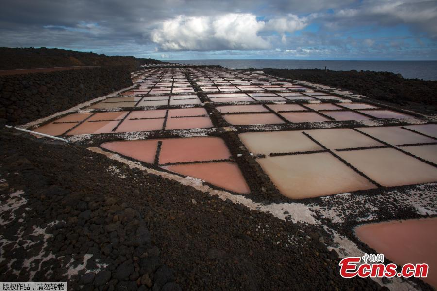 A picture shows salt pans at the Salinas de Fuencaliente, south of the island of Las Palmas in Spain on November 26, 2018. Las Salinas de Fuencaliente is an exploitation of 35,000 square metres of high quality sea salt near the Teneguia volcano range. (Photo/Agencies)