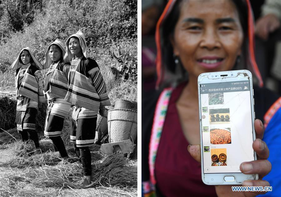 This combination photo shows Jino women separating grain seeds with their feet in 1984 (left, file photo); and Jino villager Li Xiuzhen showing a WeChat group for sales of local specialty goods in Baka Village of Jino Ethnic Township on Jino Mountain, Nov. 20, 2018 (right, photo by Lin Yiguang). With a population of slightly over 20,000, the Jino people had only been officially acknowledged in 1979 as an independent ethnic group of China. Until 1949, most of them had lived for generations in primitive mountain tribes in southwest China\'s Yunnan Province. Over the four decades since it embraced the reform and opening-up policy, China has spared no effort to support ethnic groups with smaller populations. Life on Jino Mountain, where most Jino communities are located, saw positive changes in parallel with improvements in local politics, economy, technology, education, culture, health care, ecology, ethnic development and other social undertakings. Just like its 55 ethnic brethren, the Jino people also benefit from China\'s reform and opening-up in seeking a prosperous life. In Jino Ethnic Township on the Jino Mountain, residents now have direct access to road, water, electricity, TV and radio, as well as the mobile network. Ninety percent of the residents have moved into new houses. Most residents own motorcycles and tractors, and some of them have purchased cars. More people have increased their income by selling local specialty products via the internet, whereas in the past, doing business was perceived as a shame. Currently, the primary education in Jino Ethnic Township achieved 100 percent coverage for all school-age children. More than 99 percent of residents have joined the rural cooperative medical insurance programme. The Jino ethnic culture undergoes protection and inheritance: the great drum dance of the Jino people has been listed as one of China\'s national intangible cultural heritages. (Xinhua)