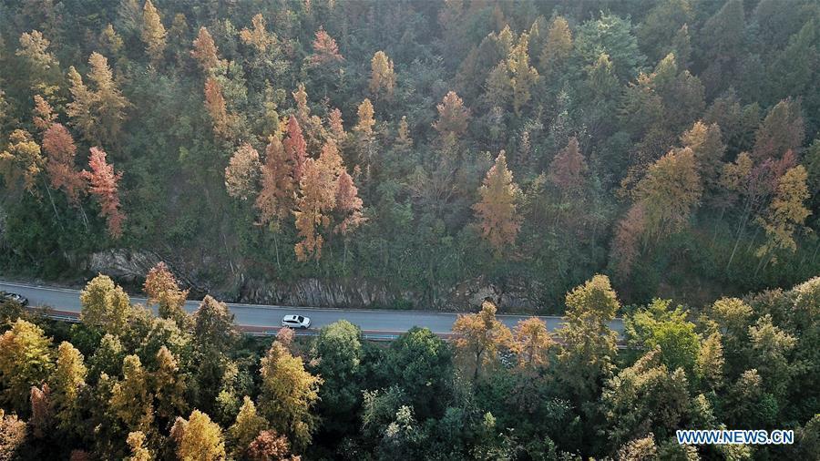 Photo taken on Nov. 28, 2018 shows the winter scenery in Baoji Township, Panzhou City of southwest China\'s Guizhou Province. (Xinhua/Ou Dongqu)