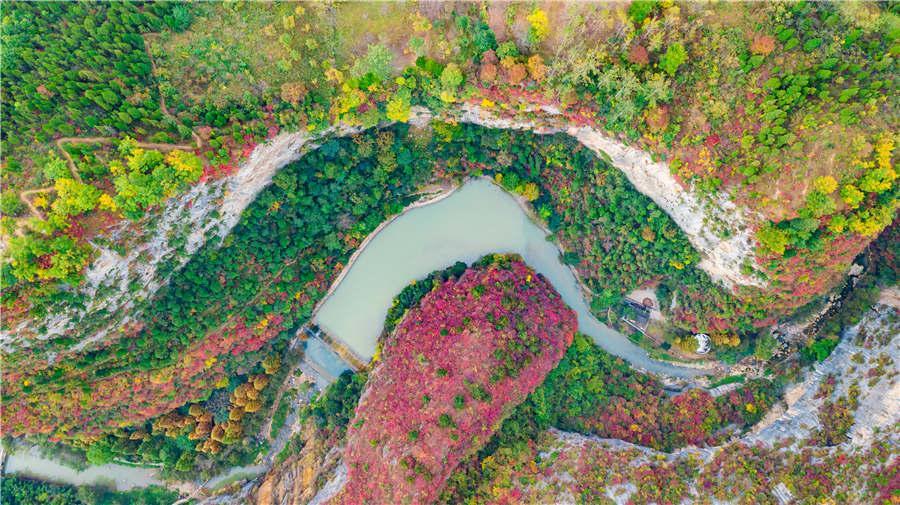 Xixiasong Scenic Spot in Longnan city of Gansu Province. (Photo provided to chinadaily.com.cn)