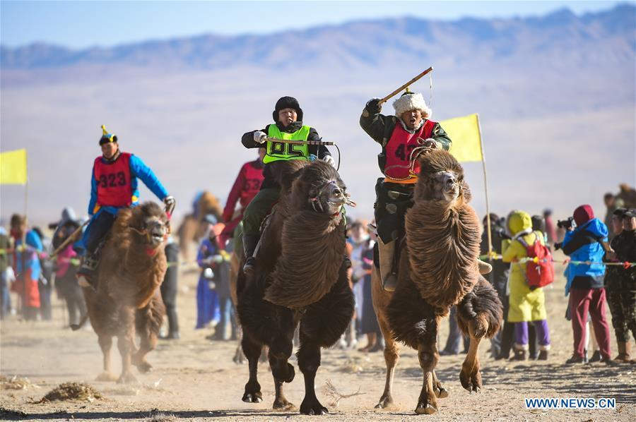 Participants take part in a race during an international camel cultural festival held in Wulatehou Banner, Bayan Nur of north China\'s Inner Mongolia Autonomous Region, Dec. 1, 2018. The three-day festival opened here on Saturday. (Xinhua/Yu Dongsheng)