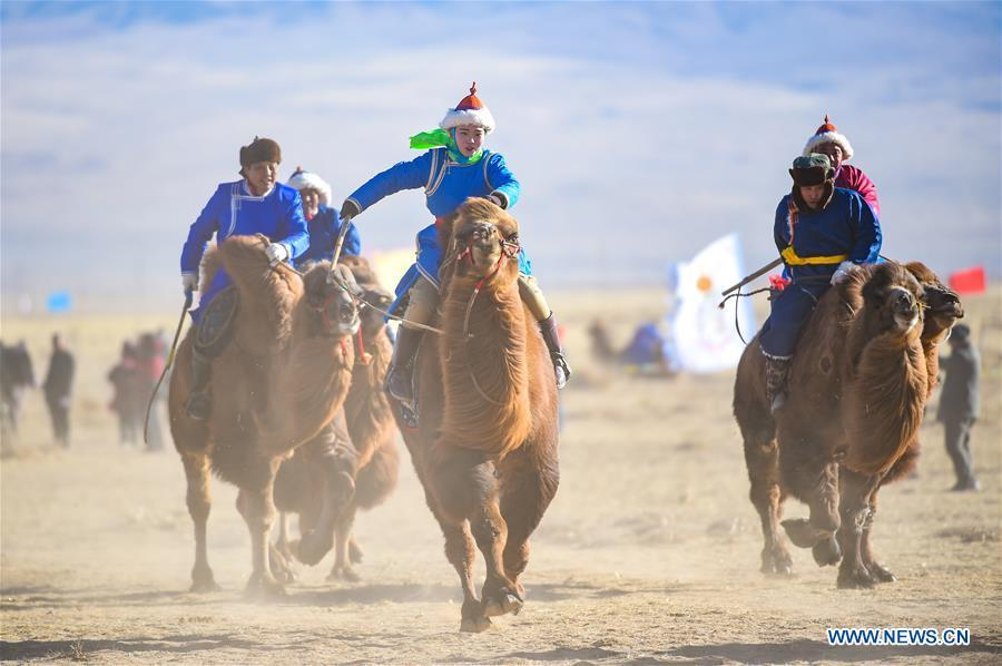 Herdsmen riding camels enter the venue of an international camel cultural festival held in Wulatehou Banner, Bayan Nur of north China\'s Inner Mongolia Autonomous Region, Dec. 1, 2018. The three-day festival opened here on Saturday. (Xinhua/Yu Dongsheng)