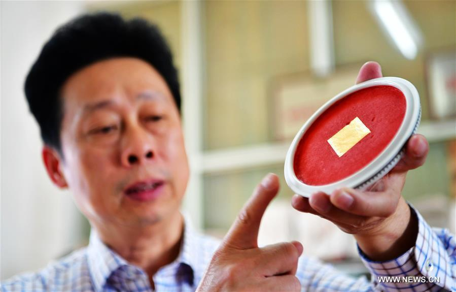 Yang Xiwei, the inheritor of Zhangzhou Babao red ink paste making technique, shows a saucer of ink paste in Zhangzhou, southeast China\'s Fujian Province, Nov. 30, 2018. Made of many precious materials such as pearl, agate, coral and musk, Zhangzhou red ink paste has been favoured by painters and calligraphers both home and abroad for over 300 years. Its making technology was listed as the second batch of national intangible cultural heritages in 2008. (Xinhua/Wei Peiquan)