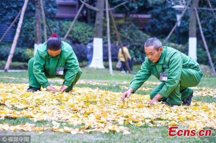 Sanitation workers collect fallen leaves and use them to form various patterns on ground in Qingyang district of Chengdu, Southwest China's Sichuan province on December 4, 2018. (Photo/VCG)