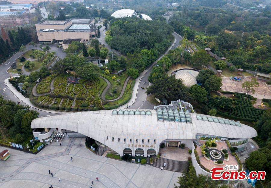 A view of the Zigong Dinosaur Museum in Zigong City, Southwest China's Sichuan Province, Dec. 9, 2018. The museum sitting on top of a large concentration of a diverse dinosaur assemblage from the Dashanpu Formation, is known for vast quantities of dinosaur fossils, sound preservation, and great varieties. It is one of the three largest dinosaur museums in the world. (Photo: China News Service/Liu Zhongjun)