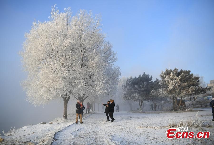 People take photos in front of trees with rime along the Songhua River in Jilin City, Jilin Province, Dec. 12, 2018. The breathtaking scenery attracted many visitors.(Photo; China News Service/Zhang Yao)