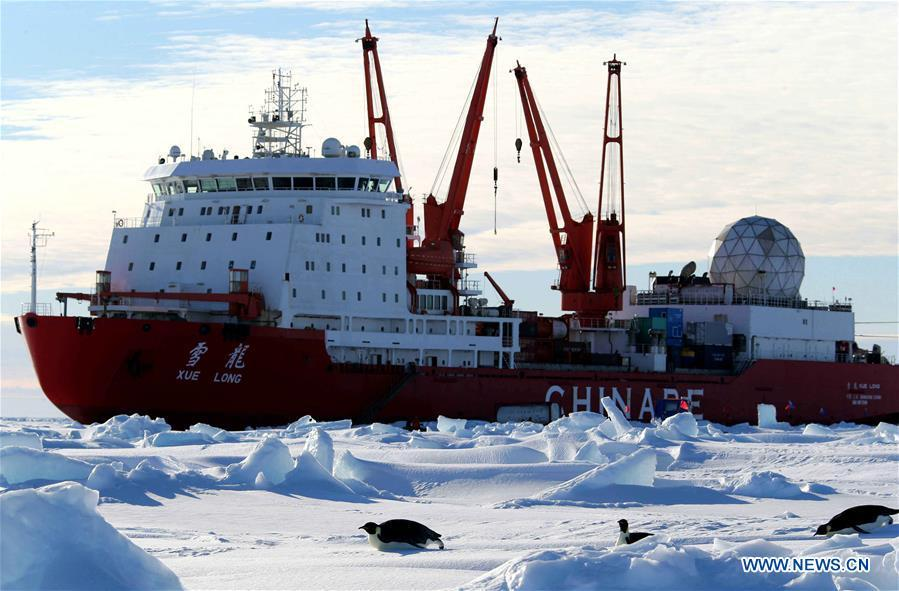 Emperor penguins are seen near China\'s research icebreaker Xuelong in Antarctica, Dec. 5, 2018. China\'s research icebreaker Xuelong, also known as the Snow Dragon, is now 44 kilometers away from the Zhongshan station. Unloading operations have been carried out after the transportation routes were determined. (Xinhua/Liu Shiping)