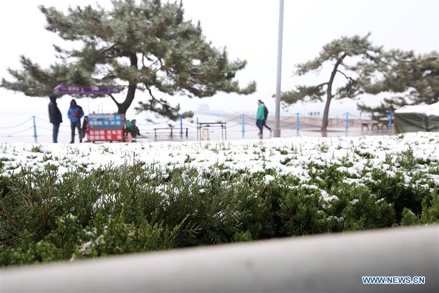 Photo taken on Dec. 11, 2018 shows the snow scenery in Qingdao, east China\'s Shandong Province. Parts of Shandong Province met snow on Tuesday. (Xinhua/Huang Jiexian)
