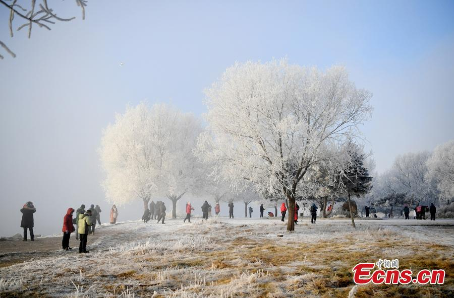 The rime scenery along the Songhua River in Jilin City, Jilin Province attracts many visitors, Dec. 12, 2018. (Photo; China News Service/Zhang Yao)