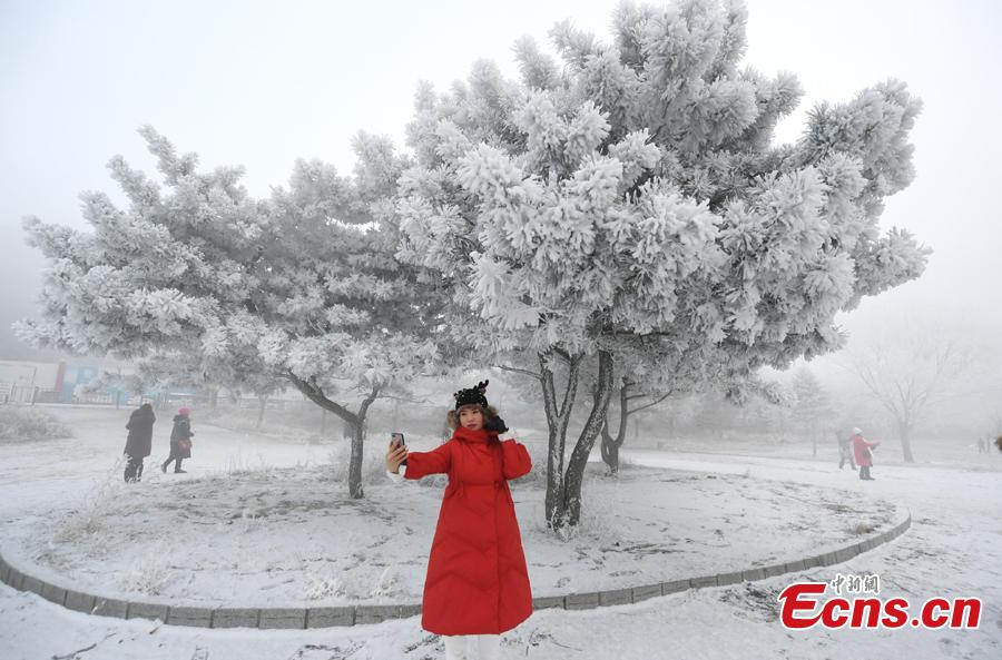 A woman takes photos in front of trees with rime along the Songhua River in Jilin City, Jilin Province, Dec. 12, 2018. The breathtaking scenery attracted many visitors. (Photo; China News Service/Zhang Yao)