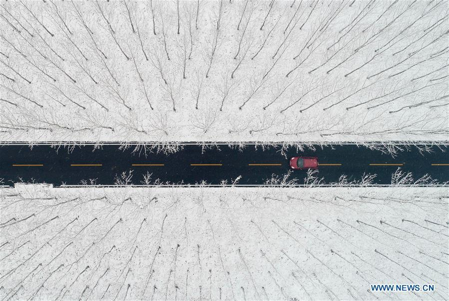 Aerial photo taken on Dec. 11, 2018 shows a car moving on the road to go through the woods covered with snow near a wetland in Zaozhuang City, east China\'s Shandong Province. (Xinhua/Gao Qimin)