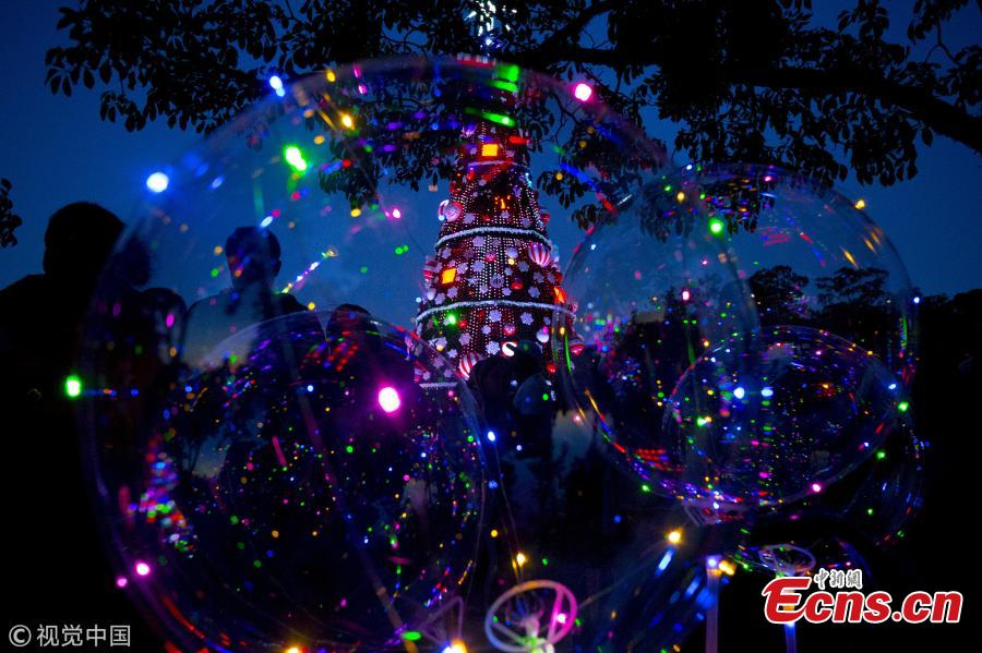 What is it like to spend Christmas in summer? On December 10, people in San Paulo, Brazil, were seen enjoying the view of a huge Christmas tree. Located in the city's Ibirapuera Park, the tree stands 43 meters high and 15 meters wide. (Photo/VCG)