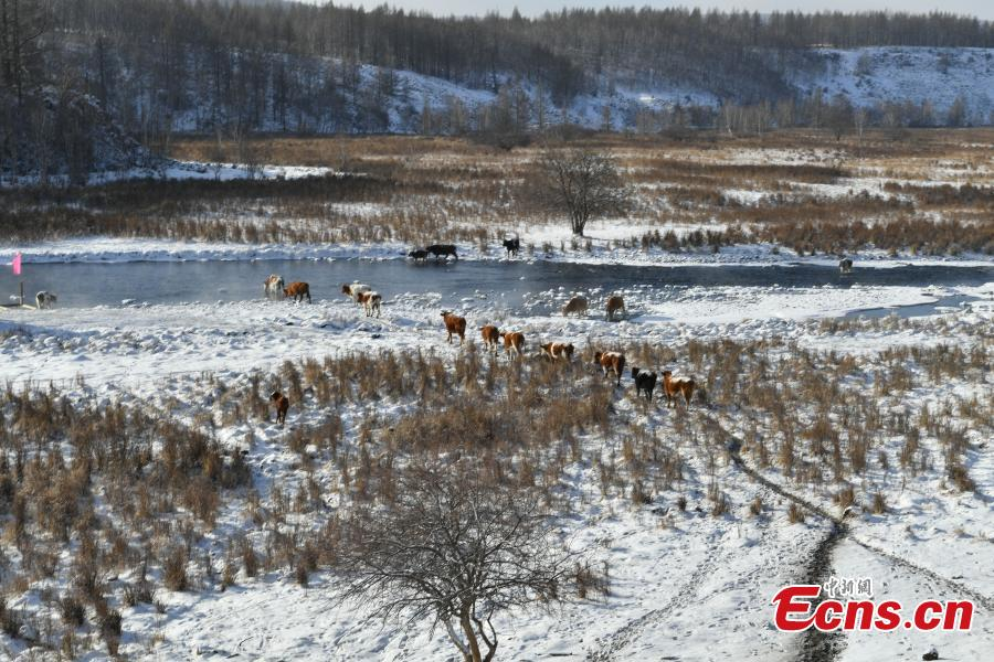 """Hardy adventurers raft on a river nicknamed the 'unfrozen river"""" with the banks covered in snow in Arxan City, North China's Inner Mongolia Autonomous Region, Dec. 13, 2018. The 20-kilometer-long river section, 74 kilometers from downtown, never freezes even in the coldest winter due to geothermy. (Photo: China News Service/Zhong Xin)"""