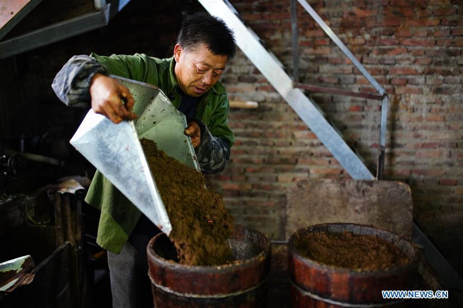 Villager Tan Han arranges powder of camellia seeds for oil extraction in Licha Village of Longsheng County, south China\'s Guangxi Zhuang Autonomous Region, Dec. 17, 2018. Camellia oil made with traditional methods by workshops in the village is quite popular in market because of its better quality and longer guarantee. (Xinhua/Huang Yongdan)