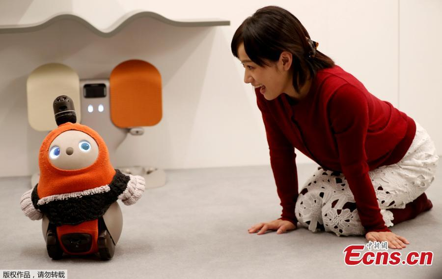 A Japanese tech startup unveiled a series of companion robots for human beings called \