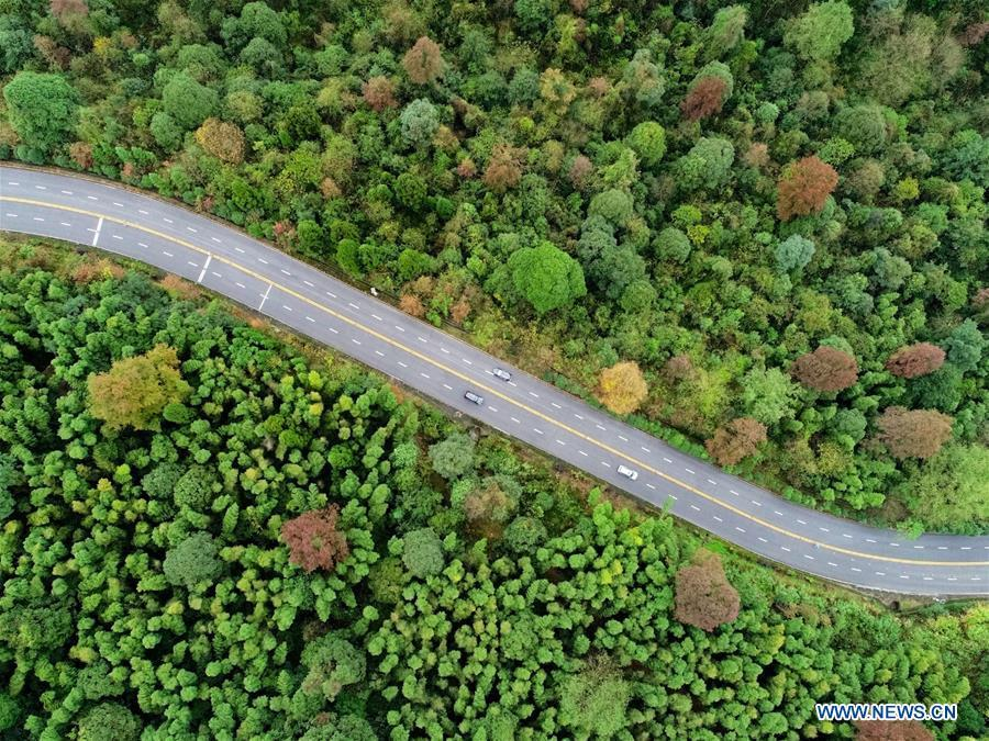 Aerial photo shows cars running on a mountain road in Ji\'an City, east China\'s Jiangxi Province, Nov. 21, 2018. Colors make our world bright and beautiful. In 2018, Xinhua photographers across China explored views from the sky with drones. Here are these drone photos with amazing colors. (Xinhua/Hu Chenhuan)