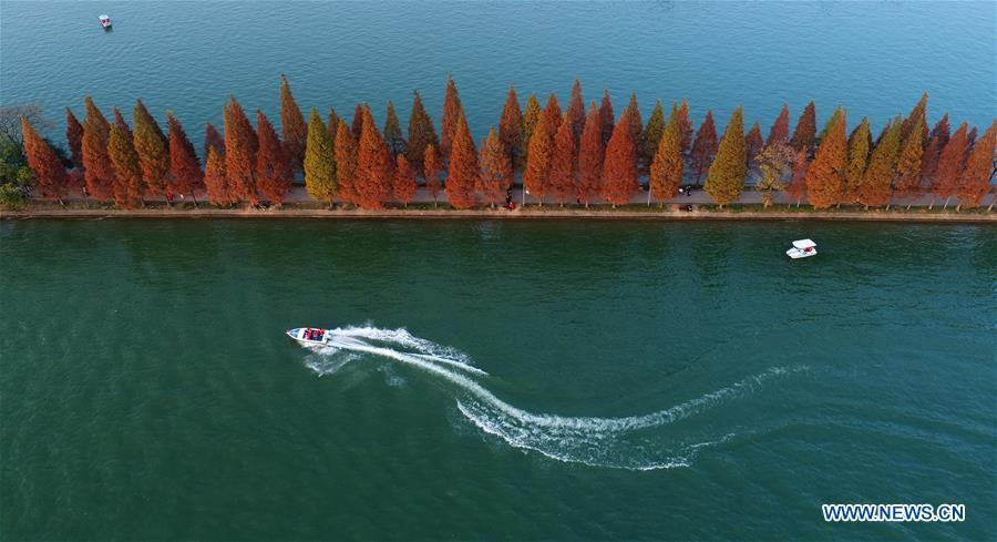 Aerial photo taken on Nov. 25, 2018 shows a view of the Nianjia Lake at the Martyrs Park in Changsha, capital of central China\'s Hunan Province. Colors make our world bright and beautiful. In 2018, Xinhua photographers across China explored views from the sky with drones. Here are these drone photos with amazing colors. (Xinhua/Li Ga)