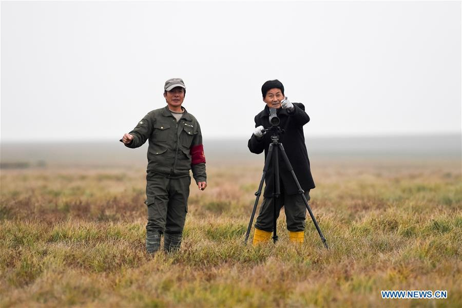 Wang Sanyi (R) observes migrant birds in Caizi Lake wetland, Anqing, in east China\'s Anhui Province, Dec. 22, 2018. Wang Sanyi, 69, founded the Caizi Lake wetland ecological protection association with more than 300 members in 2010. Some villagers who used to be hunters now join the association, becoming volunteers to protect migrant birds. With the help of the association, the ecological environment of Caizi Lake wetland has been improved in recent years. Thanks to the efforts of protection, more and more migrant birds are seen here overwintering. \