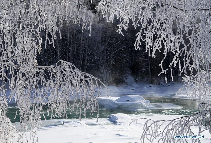 Photo taken on Dec. 23, 2018 shows the frost scenery at the Kanas scenic area, northwest China\'s Xinjiang Uygur Autonomous Region. (Xinhua/Han Yuqing)