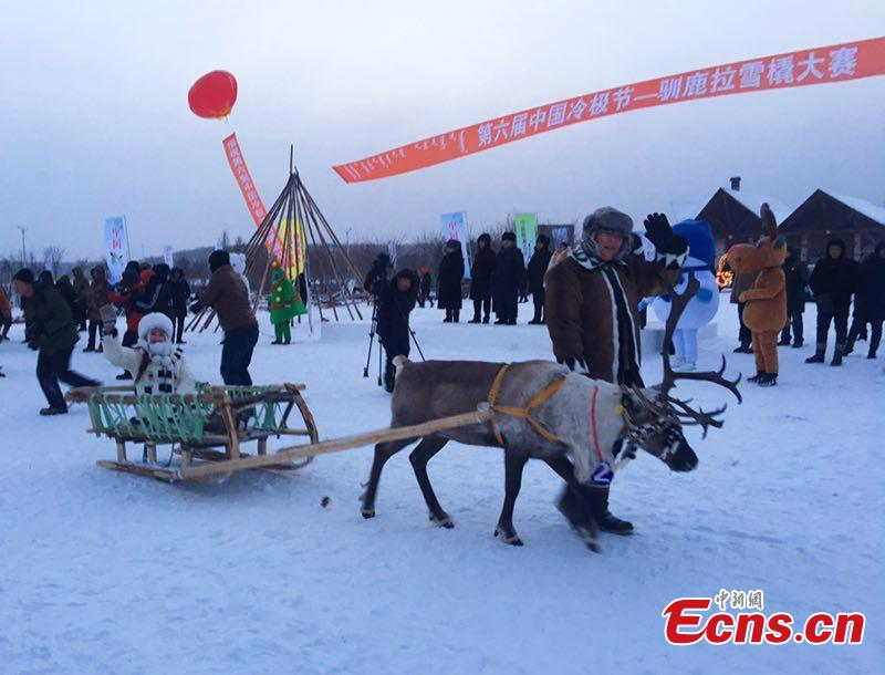 Sled reindeer guided by local Ewenki herdsmen compete in a race on Dec. 25 in Genhe City, China\'s Inner Mongolia Autonomous Region, in a bid to portray local customs. The Aoluguya, a tribe of the Ewenki ethnic group in Genhe city is the only tribe that still breeds reindeer in China. It is said about 800 reindeer are living in Genhe and have become a fascinating \