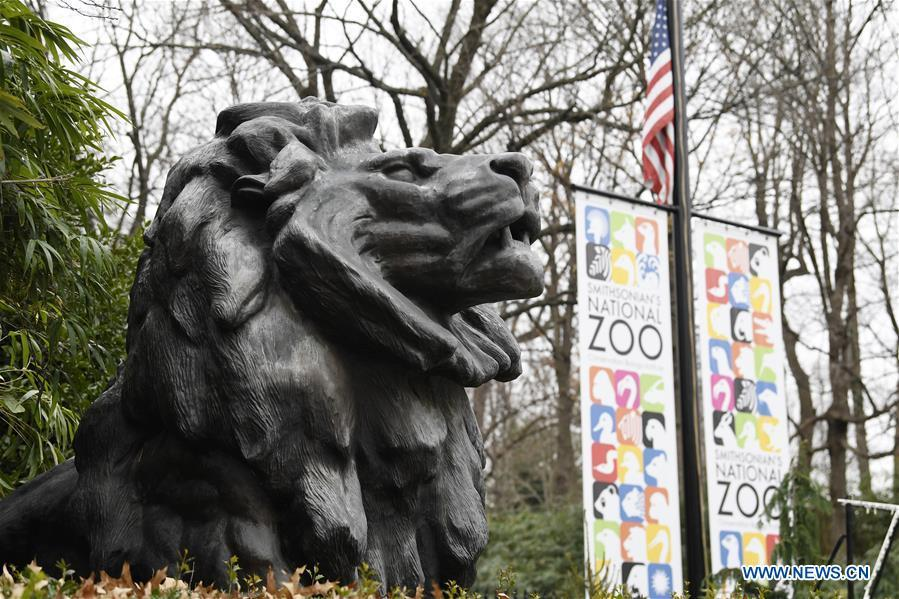 Photo taken on Jan. 2, 2019 shows a statue near the gate of the National Zoo in Washington D.C., the United States. The 19 Smithsonian museums and the National Zoo in Washington D.C. closed their doors on Wednesday as the partial U.S. government shutdown dragged on. (Xinhua/Liu Jie)