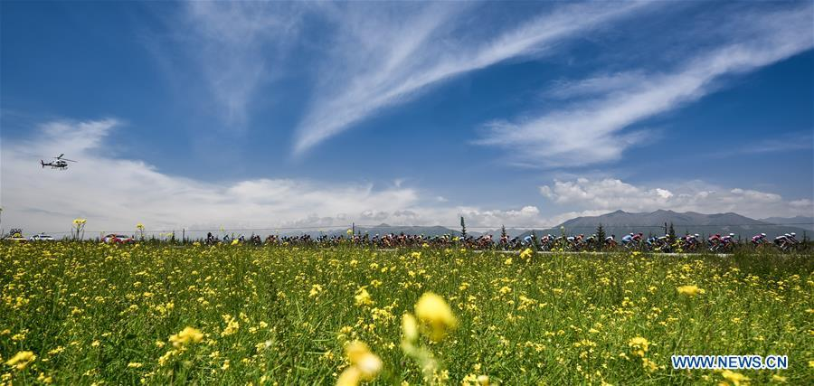 Cyclists ride past a cole flower field in the Tour Round Qinghai Lake International Road Cycling Race in Menyuan Hui Autonomous County, northwest China\'s Qinghai Province, July 28, 2018. The 18th Central Committee of the Communist Party of China (CPC) held the third plenary session in November, 2013. In the five years since then, China\'s reform momentum had been particularly strong as the CPC decided to advance reform in all aspects during the meeting. Since the third plenary session, Chinese President Xi Jinping has presided over at least 45 high-profile meetings on advancing reforms, during which 400 documents and 1,932 reform plans have been launched. As a result, China\'s reform has been expanded from the economic field to a broad sphere including administrative management, culture, society, ecological conservation, Party building, and the military. (Xinhua/Wu Gang)