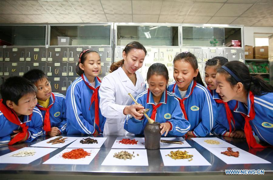 Students experience grinding Chinese herbal medicine at Neiqiu hospital of traditional Chinese medicine in Neiqiu County, north China\'s Hebei Province, Oct. 21, 2018. China\'s primary and middle schools have been urged to improve education for all-around student development, according to a directive issued by authorities. Jointly issued by the Ministry of Education and other eight agencies, the circular asked schools to offer courses that are in accord with the national syllabus in terms of their quantity and quality. The enhancement of courses\' difficulty levels and speed at random and in disregard of the curriculum is prohibited, according to the circular. Primary and junior middle schools are not allowed to set up any \
