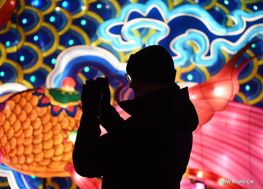 A visitor is silhouetted against a light during China Light Festival at Cologne Zoo in Cologne, Germany, on Jan. 3, 2019. The festival is held here presenting more than 50 lights from Dec. 8, 2018 to Jan. 20, 2019. (Xinhua/Lu Yang)