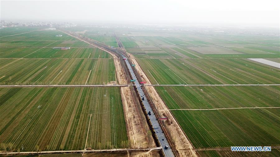 Aerial photo taken on March 29, 2018 shows a wheat field in Dawang Township of Anxin County, which is part of Xiongan New Area, north China\'s Hebei Province. China\'s central authorities have approved the 2018-2035 master plan for Xiongan New Area, stressing that its creation is significant to high-quality development and the building of the modern economic system. The plan was approved by the Central Committee of the Communist Party of China (CPC) and the State Council. The master plan is the fundamental guideline for the development, construction and management of the Xiongan New Area and should be strictly implemented, according to the approval released on Wednesday. The plan also lists overall development goals for the new area. By 2035, Xiongan will basically develop into a modern city that is green, intelligent and livable, with relatively strong competitiveness and harmonious human-environment interaction. (Xinhua/Mu Yu)