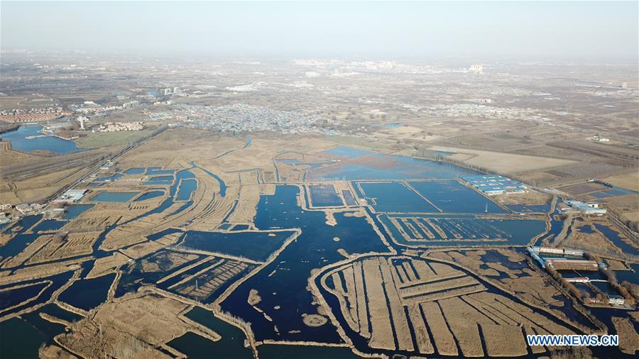 Aerial photo taken on Dec. 7, 2018 shows the Baiyangdian lake in Xiongan New Area, north China\'s Hebei Province. China\'s central authorities have approved the 2018-2035 master plan for Xiongan New Area, stressing that its creation is significant to high-quality development and the building of the modern economic system. The plan was approved by the Central Committee of the Communist Party of China (CPC) and the State Council. The master plan is the fundamental guideline for the development, construction and management of the Xiongan New Area and should be strictly implemented, according to the approval released on Wednesday. The plan also lists overall development goals for the new area. By 2035, Xiongan will basically develop into a modern city that is green, intelligent and livable, with relatively strong competitiveness and harmonious human-environment interaction. (Xinhua/Mu Yu)