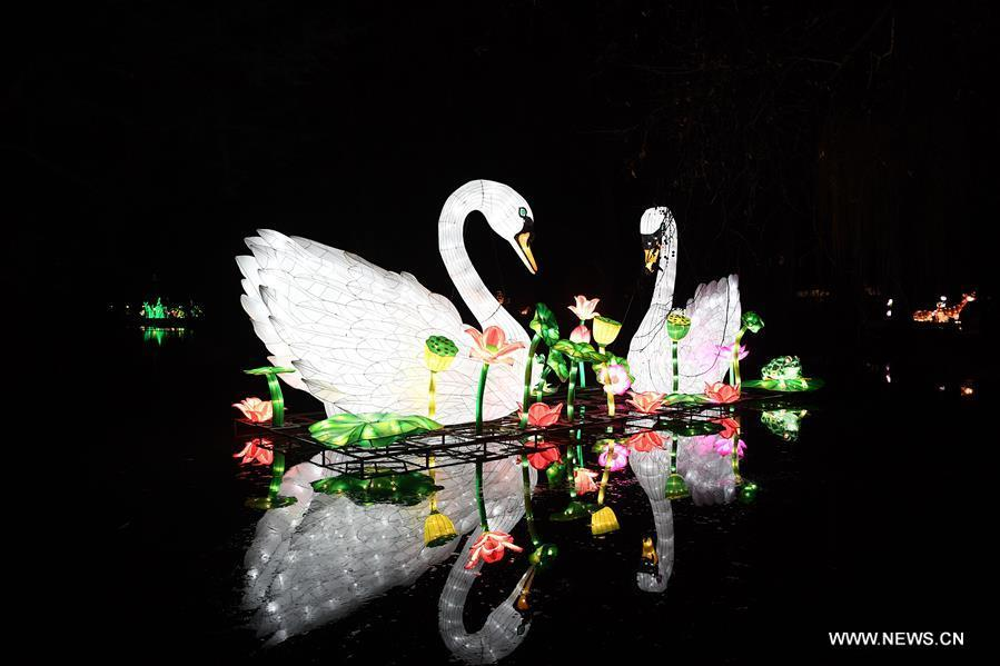 Illuminated swans are seen during China Light Festival at Cologne Zoo in Cologne, Germany, on Jan. 3, 2019. The festival is held here presenting more than 50 lights from Dec. 8, 2018 to Jan. 20, 2019. (Xinhua/Lu Yang)