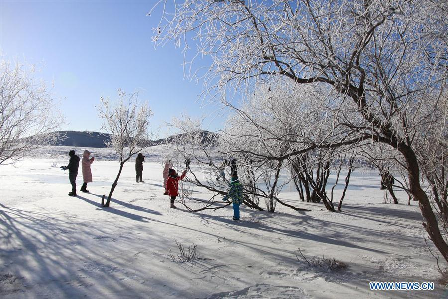 Tourists take photos of frost scenery in Hexigten Banner, north China\'s Inner Mongolia Autonomous Region, Jan. 2, 2019. (Xinhua/Liu Mancang)