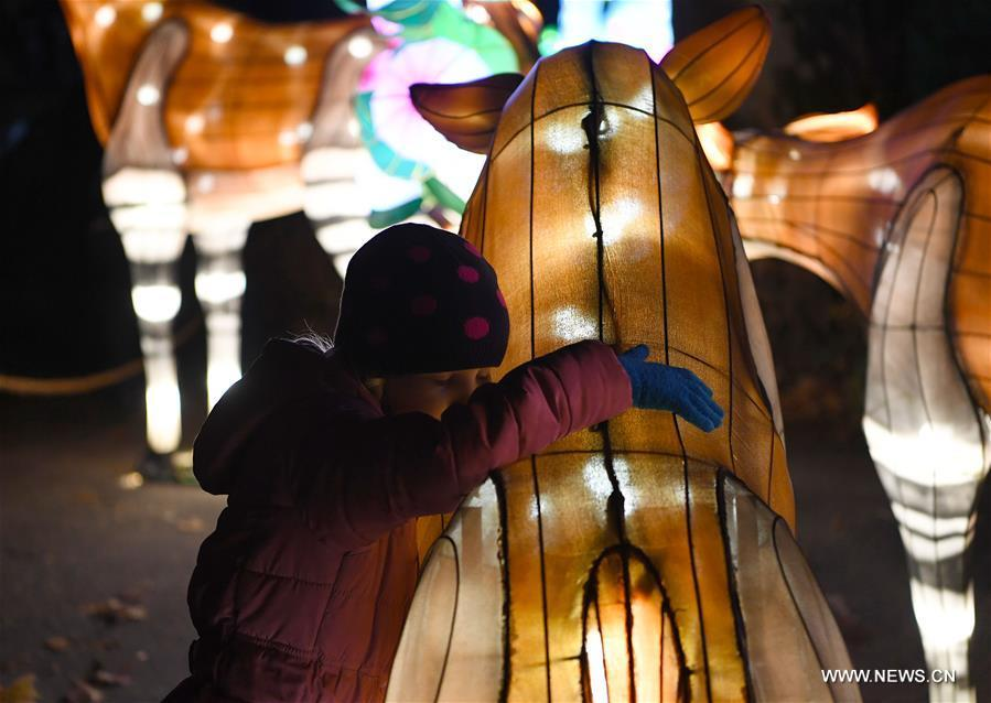 A child visits China Light Festival at Cologne Zoo in Cologne, Germany, on Jan. 3, 2019. The festival is held here presenting more than 50 lights from Dec. 8, 2018 to Jan. 20, 2019. (Xinhua/Lu Yang)