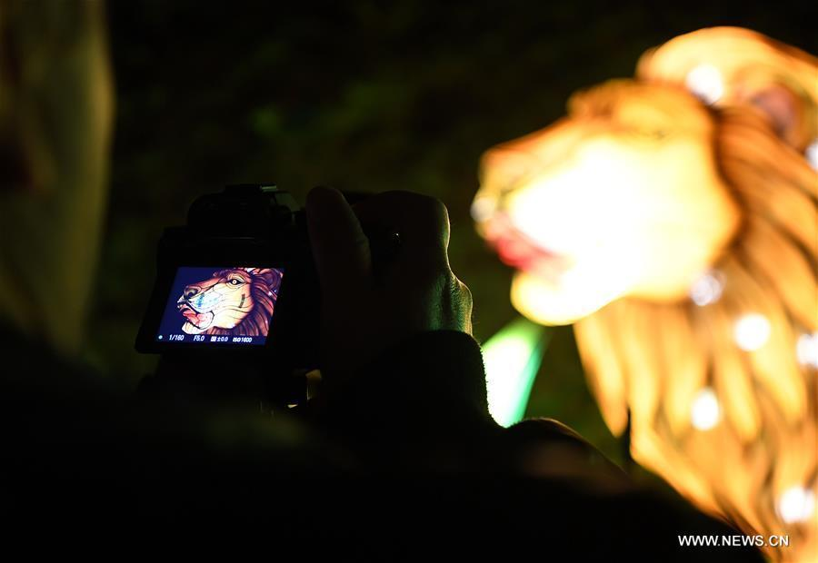 A visitor takes photos during China Light Festival at Cologne Zoo in Cologne, Germany, on Jan. 3, 2019. The festival is held here presenting more than 50 lights from Dec. 8, 2018 to Jan. 20, 2019. (Xinhua/Lu Yang)