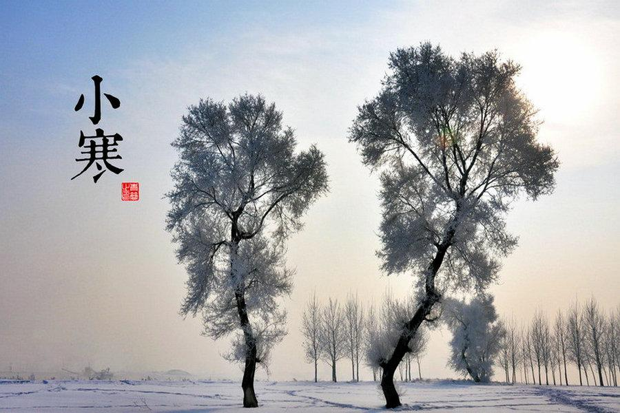 A shot of trees covered by snow. (Photo/china.com.cn)  Minor Cold is the 23rd solar term of the 24 traditional Chinese solar terms. For most areas of China, it marks the start of the coldest days of the year. This year\'s Minor Cold starts on Jan 5. Many Chinese sayings use the weather and climate situation during Minor Cold to predict the weather in the following spring.  Still, bitter cold can\'t prevent people from enjoying their lives. Here are some things that help us stay warm during Minor Cold.