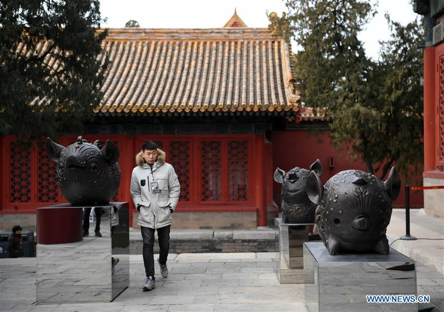 A visitor views Han Meilin\'s Chinese Zodiac Art Exhibition in Beijing, capital of China, Jan. 5, 2019. The Chinese Zodiac Art Exhibition, displaying the fine arts of Chinese artist Han Meilin, kicked off in the Palace Museum on Saturday and will last until Feb. 20, 2019. (Xinhua/Jin Liangkuai)