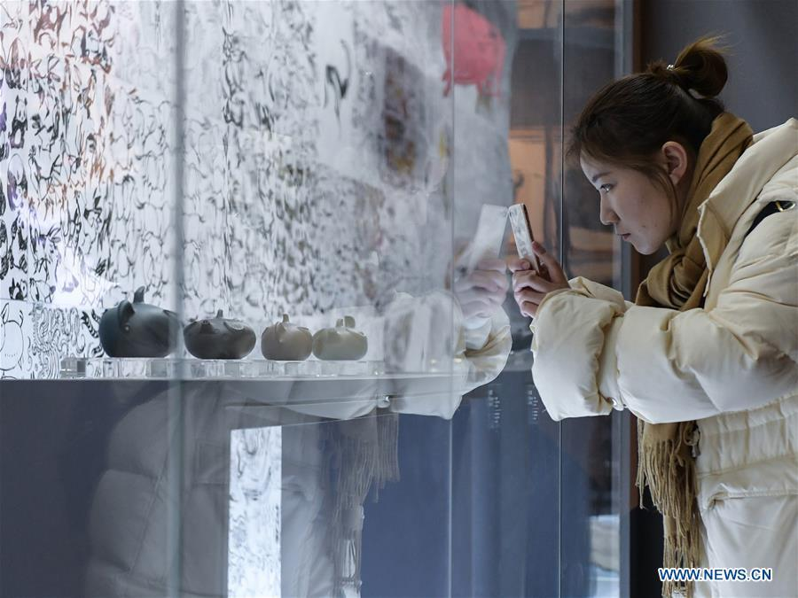 A visitor views Han Meilin\'s Chinese Zodiac Art Exhibition in Beijing, capital of China, Jan. 5, 2019. The Chinese Zodiac Art Exhibition, displaying the fine arts of Chinese artist Han Meilin, kicked off in the Palace Museum on Saturday and will last until Feb. 20, 2019. (Xinhua/Li He)